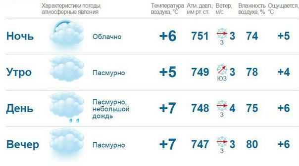 pogoda-spb