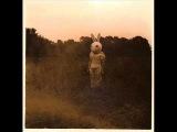 Vincent Gallo - Sweetness