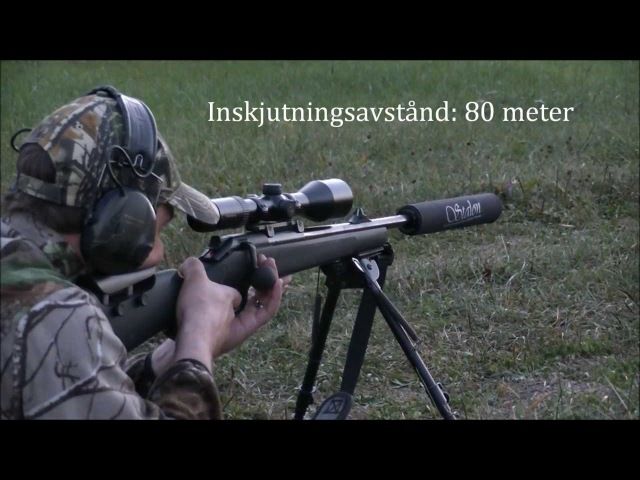 Test shooting Blaser R93 with Stalon Compact silencer