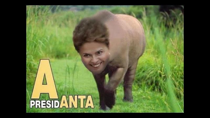 A inteligência da Dilma e das marmotas » Freewka.com - Смотреть онлайн в хорощем качестве