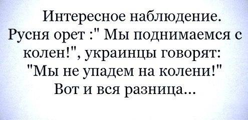 Ночью российско-террористические войска обстреляли позиции украинских сил не менее 5 раз, - Тымчук - Цензор.НЕТ 3143