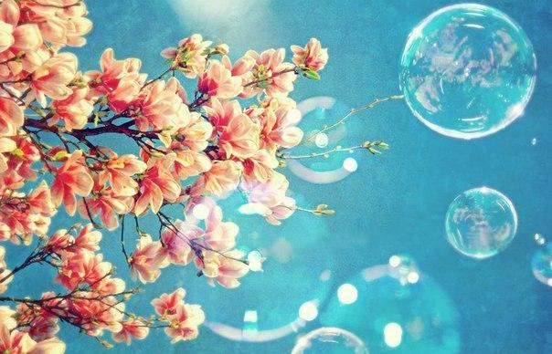 Весна... Пришел рассвет и миру улыбнулся... - Страница 2 9BK0qmbf8Tc
