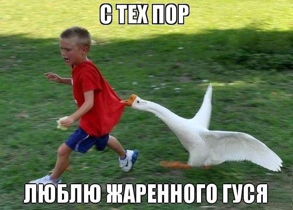 http://cs623722.vk.me/v623722637/23c7f/XGgkg7kSwow.jpg