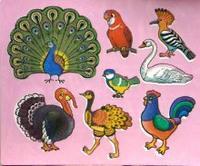 Трафареты пластиковые. птицы, Дрофа-Медиа