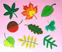 Трафареты пластиковые 1612 листья, Дрофа-Медиа