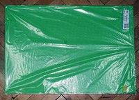 Картон плакатный, 10 листов, зелёный, Werola