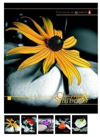 """Тетрадь """"цветы и камни"""", 48 листов, клетка, Альт"""