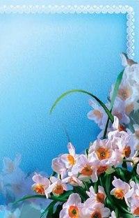 """Адресная папка """"поздравляем"""" (цветы), Ульяновский Дом печати"""