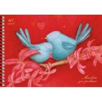 """Альбом для рисования """"синие птицы"""", 40 листов, Канц-Эксмо (Listoff, Unnika Land)"""
