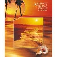 """Тетрадь на кольцах """"океан"""", клетка, 160 листов, Action!"""