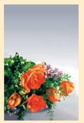 """Адресная папка """"поздравляем с юбилеем"""". цветы, Ульяновский Дом печати"""