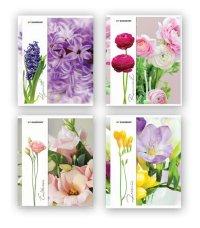 "Тетрадь ""flowers-3"", клетка, 48 листов, Silwerhof"