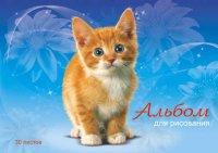 """Альбом-планшет для рисования """"рыжий котенок"""", 30 листов, АппликА"""