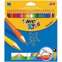 """Карандаши цветные """"evolution 93"""", 24 цвета , 24 штуки, BIC"""