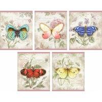 """Тетрадь """"jane shasky. чудесные бабочки"""", а5, 48 листов, клетка, Канц-Эксмо (Listoff, Unnika Land)"""