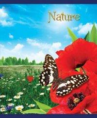"Тетрадь ""nature. маки и бабочка"", 48 листов, клетка, КТС-про"