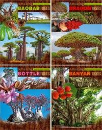 """Тетрадь ученическая """"удивительные деревья"""", клетка, 96 листов, Би Джи"""