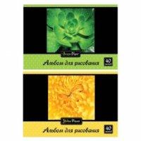 """Альбом для рисования """"цвета природы"""", 40 листов, Action!"""