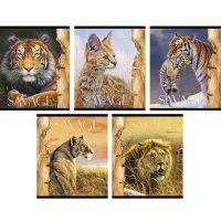 """Тетрадь """"дикие кошки (savage)"""", а5, 48 листов, клетка, Канц-Эксмо (Listoff, Unnika Land)"""
