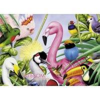 """Альбом для рисования """"яркий мир птиц"""", 40 листов, Канц-Эксмо (Listoff, Unnika Land)"""