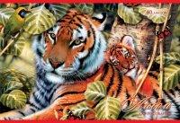 """Альбом для рисования """"дикая природа. тигры"""", 40 листов, Канц-Эксмо (Listoff, Unnika Land)"""