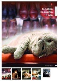"""Тетрадь """"приколы. кошки-2"""", а5, 48 листов, клетка, Альт"""