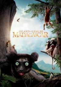 Isla de Lemures: Madagascar