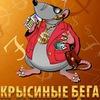 Бизнес - игра Крысиные бега Харьков