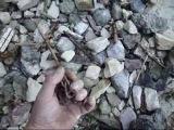 поиск старинных монет после шторма! Видео от нашего подписчика Юры Донченко!