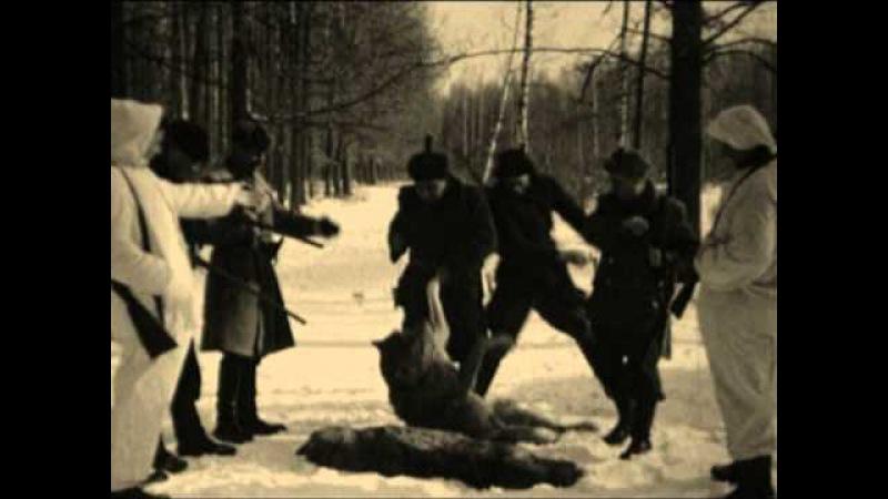 Виталий Аксенов Охота на волков