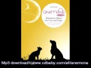 Anemona Brainwave music for Cats and Dogs