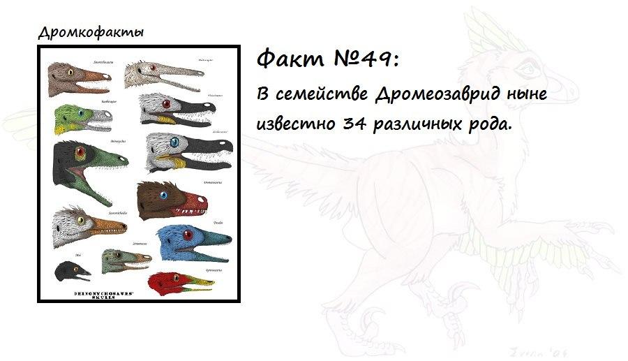 https://pp.vk.me/c623724/v623724874/9a86/QGfX6249V58.jpg