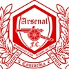 Arsenal Russian Speaking Supporters Club Rostov