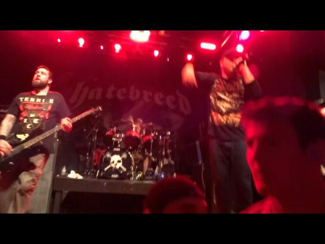 Hatebreed - Destroy Everything (Live 2015) » Freewka.com - Смотреть онлайн в хорощем качестве