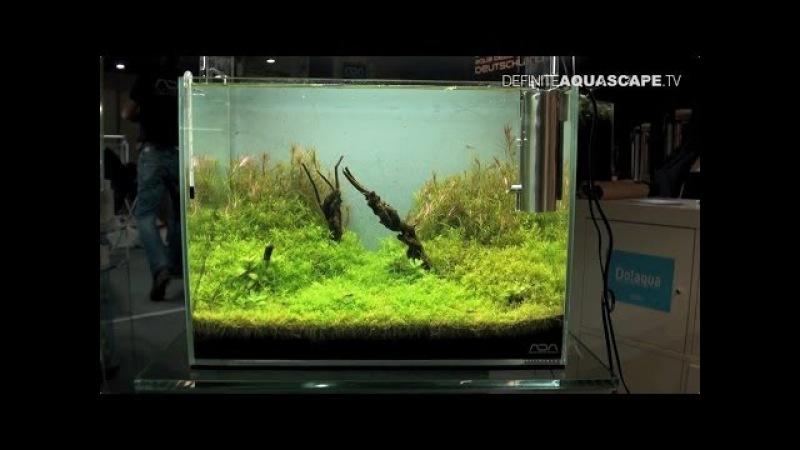 Aquarium Ideas - planted aquariums of Heimtiermesse 2014, Hannover, pt. 3