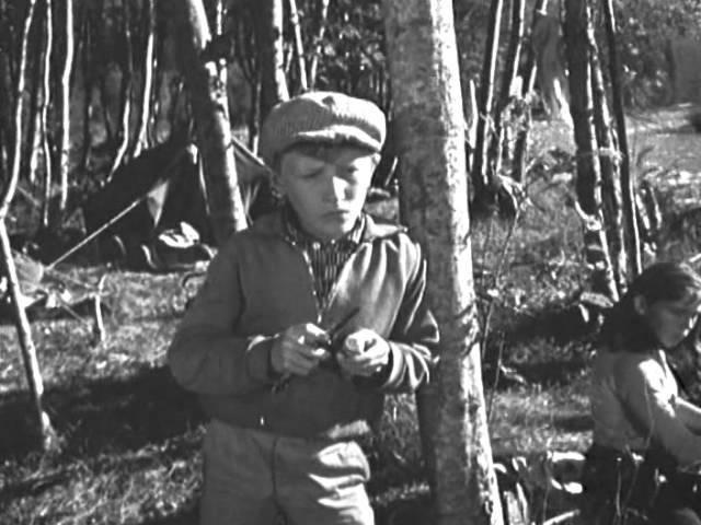 О чём молчала тайга (1965) Полная версия