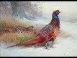 Rachel Portman - Birds