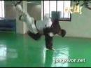 ДЖИУ-ДЖИТЦУ ((Korean jiu jitsu)Gongkwon Yusul's basic mo