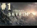 Прохождение Skyrim - часть 1 (Гибель Хелгена)