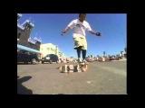 Primo Desiderio Freestyle Skateboard Mission Beach San Diego Ca