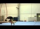 Vellu 16 Gainers - World Record -