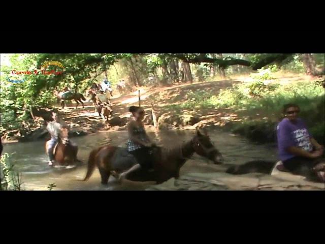 Marmaris Horse Riding www.caroletayfun.com