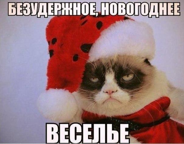 Картинки по запросу фото для тех у кого нет новогоднего настроения