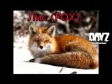 Dayz: Звуки животных в файлах игры. (Лань, заяц, лис)