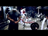 BANG THAT BITCH WITH BIG BOY  PIT BULL (ULTIMATE PAUSE REPS)