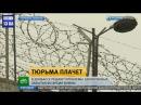 Заключенные забытые во время войны Проблема Донбасса Новости Украины Сегодня War in Ukraine
