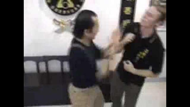 Sifu Wan Kam Leung Practical Wing Chun l