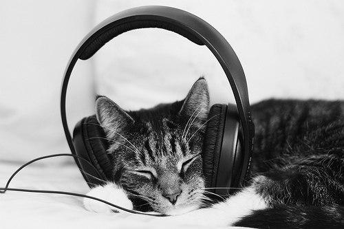 слушать мп3 зарубежные новинки