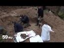 Раскопки солдат под Ельней. Часть 2. (год 2011)