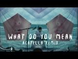 Justin Bieber - What Do You Mean - Dillon Francis - Acapella Remix